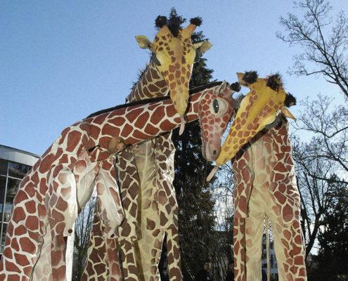 galeria_Girafes_Xirriquiteula01