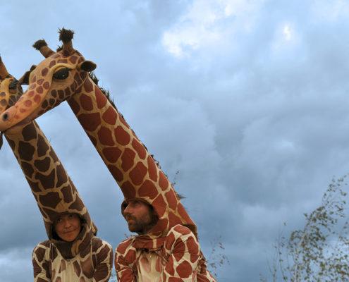 galeria_Girafes_Xirriquiteula02