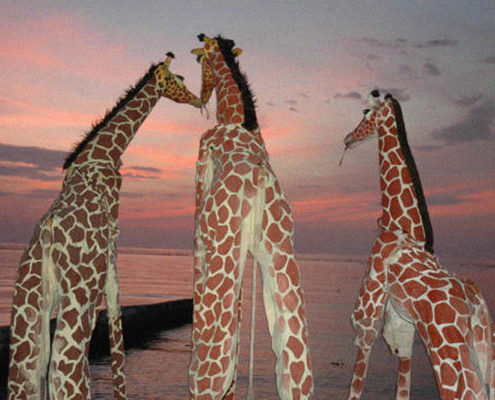 galeria_Girafes_Xirriquiteula05
